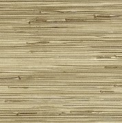 Medium Beige Grasscloth Wallpaper
