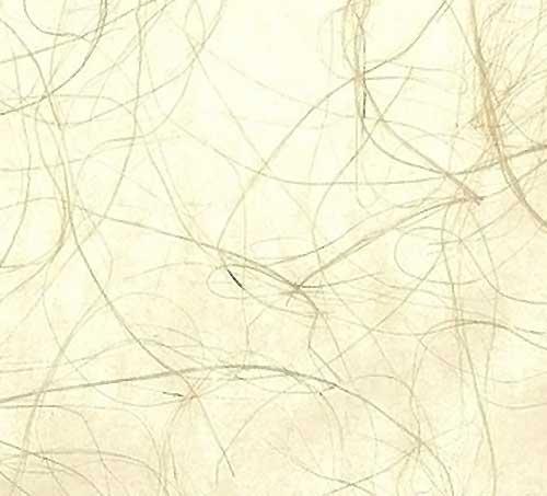 Gold Ivory Grasscloth Wallpaper