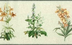 botanical floral vintage wallpaper border, blue, green, gray, orange, yellow, faux finish