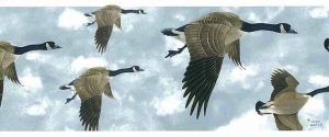Glen Loates Geese Wallpaper Border with Cloudy Sky