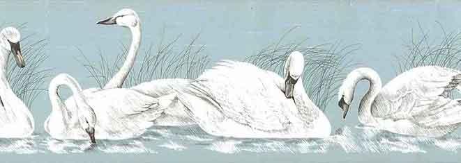 Swans Wallpaper Border