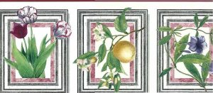 botanical Waverly vintage Wallpaper Border, pink, green, white, Audobon