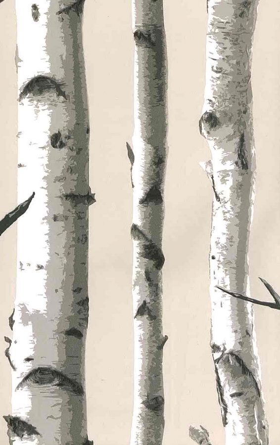 wallpaper birch trees, taupe, gray, black, white