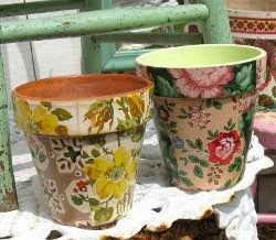 Wallpapered Flower Pots