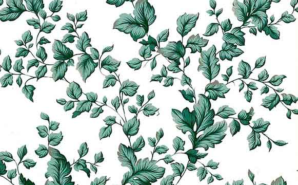 Vintage Ivy Wallpaper with Green Leaves on White