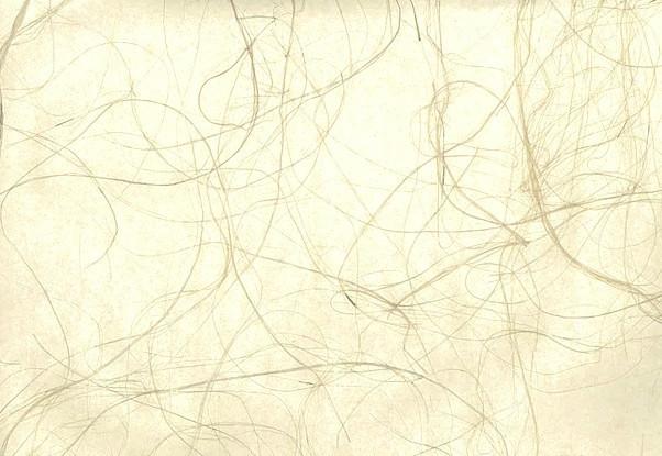 Gold Ivory Grasscloth Wallpaper, cream, soji screen, Oriental