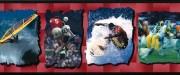Surfing, soccer, football, cycling, board sailing wallpaper border