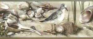 seashells wallpaper border, seabirds, sandpipers, seagulls, sand, beige, taupe, brown, cream
